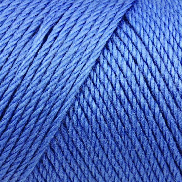 BerryBlue-Caron Simply Soft Brites-750x750