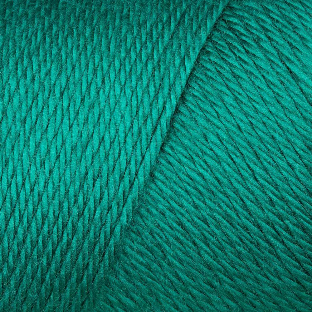 Cool Green - Caron Simply Soft solids yarn