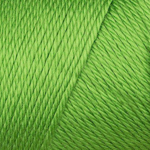 Green - Caron Simply Soft Yarn