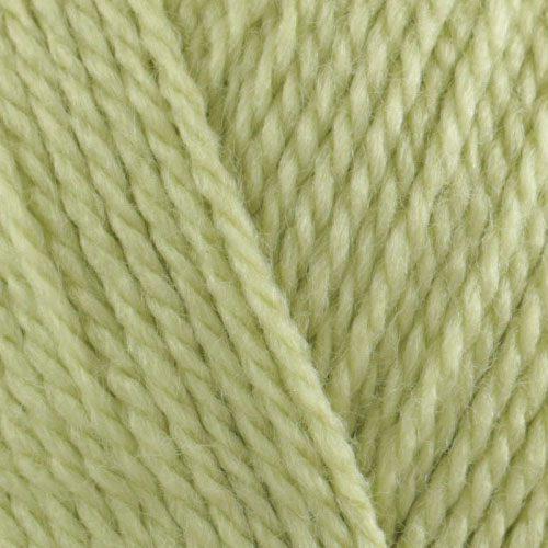 soft fern
