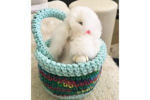 easter crochet basket pattern with bunny