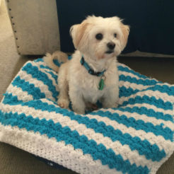 pet blanket crochet marine blue